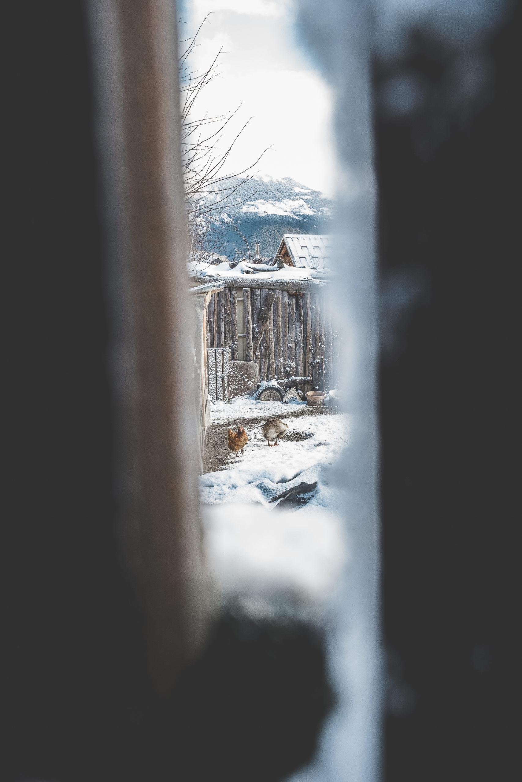 photographie-paysans-lyon