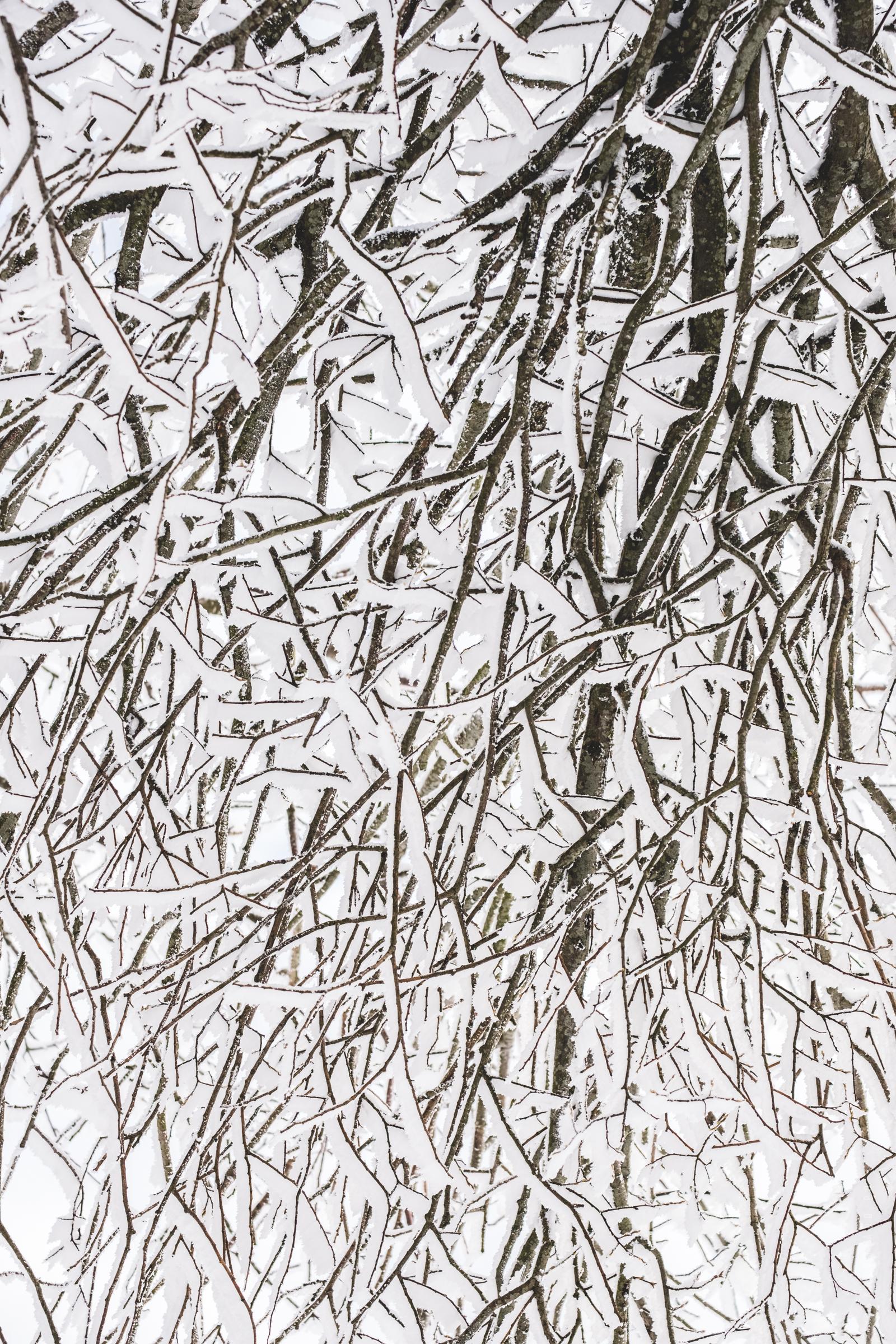 yzeron-neige