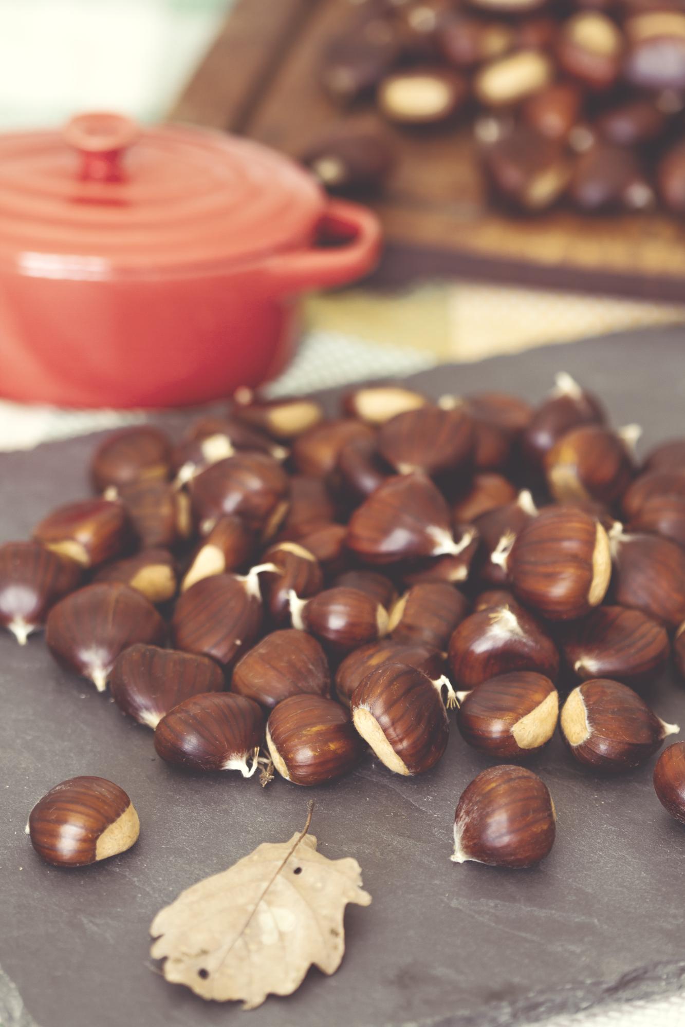 Photographe culinaire Lyon châtaignes marrons